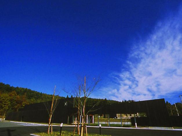 image-7-1